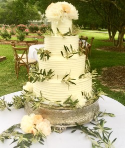 Four tiered horizontal lined buttercream cake garnished with olive branches and peonies